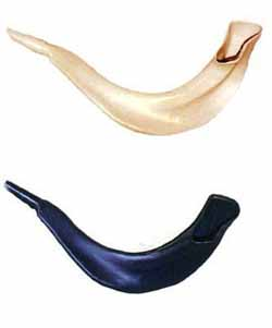 Shofar - Plastic - Real-looking