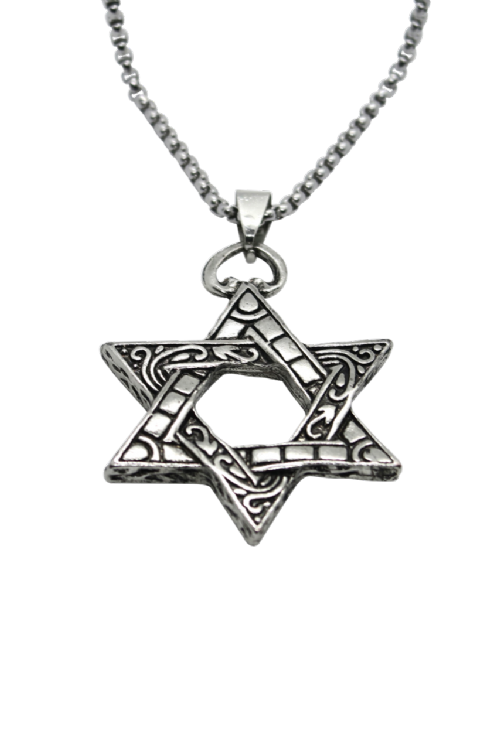 NECKLACE: Large Silver Star of David on thick silver chain