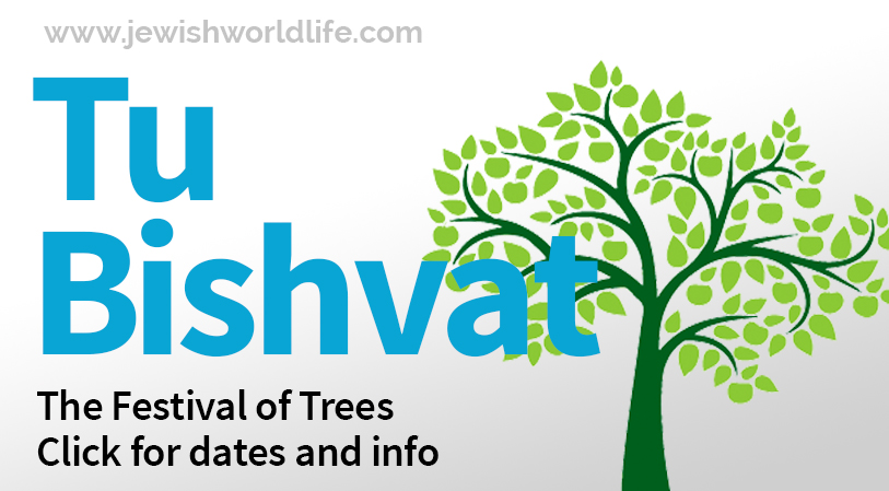 Click Here: The Festival of Trees